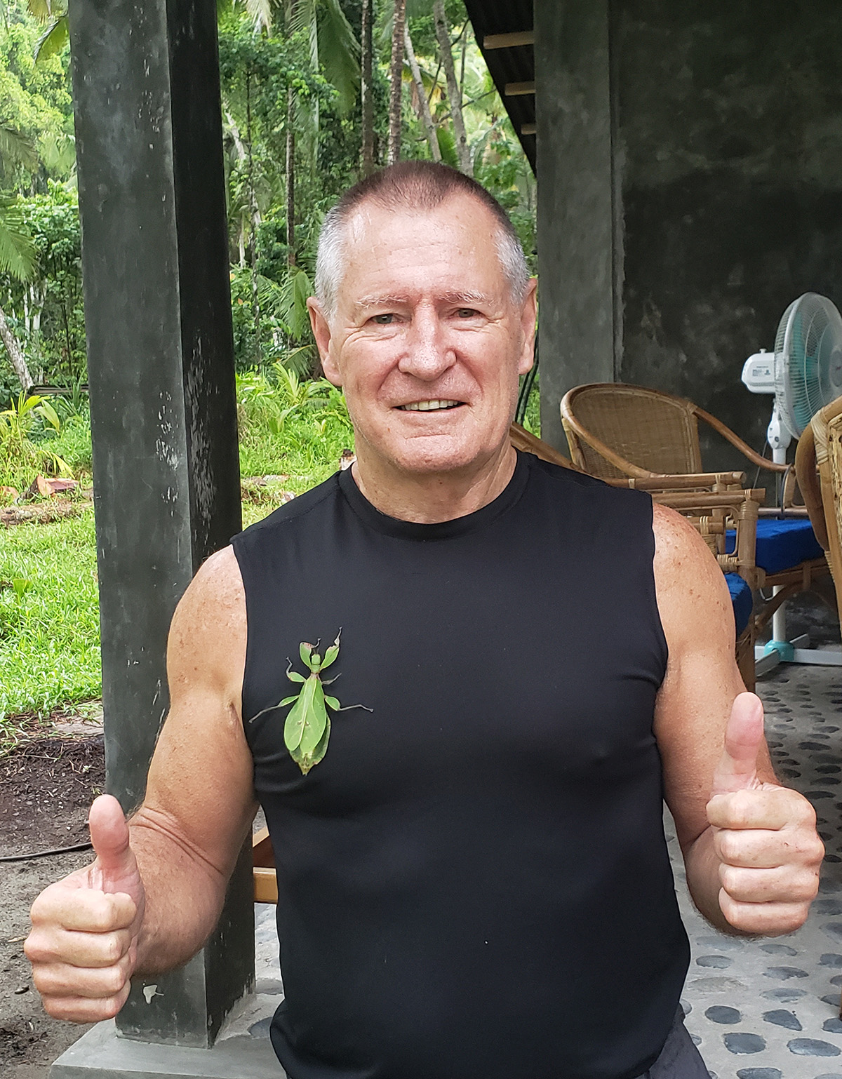 Paddy with leaf insect, Morotai 2