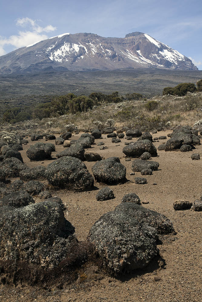 oulders and mudflat, East Shira Hill, Mt Kilimanjaro